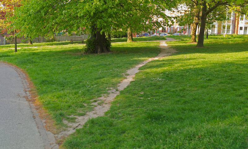 Figure 5: Desire path (Alamy)